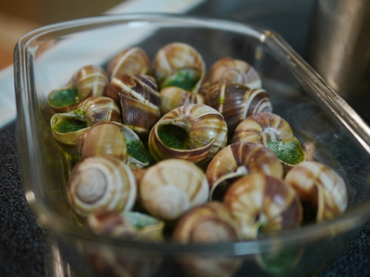 Une vingtaine d'escargots nous attendait...