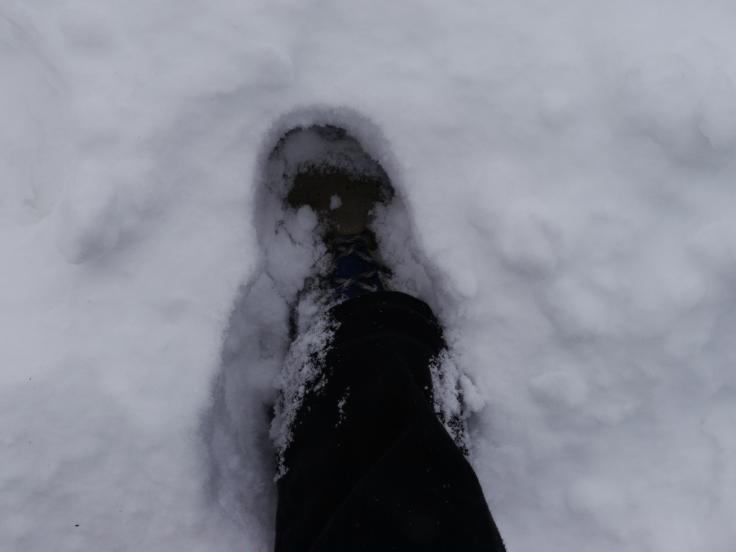 Pour traverser, on est obligé de marcher sur les tas. Évidemment, la neige s'entasse et on s'enfonce dans parfois 30 à 40cm!