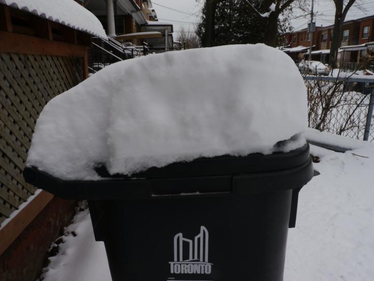 Une bonne vingtaine de centimètres sur ma poubelle.