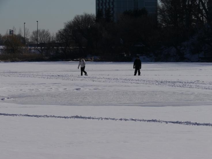 Finalement, la glace était assez résistante pour supporter aussi le poids d'adultes.