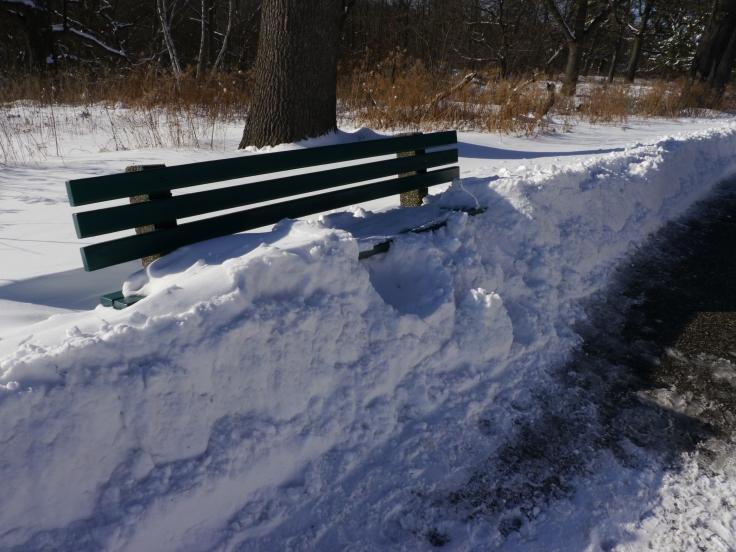Une fois tassée, la neige dépassait la hauteur d'un siège de banc.