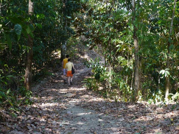 Le chemin serpentait d'abord à l'ombre des arbres