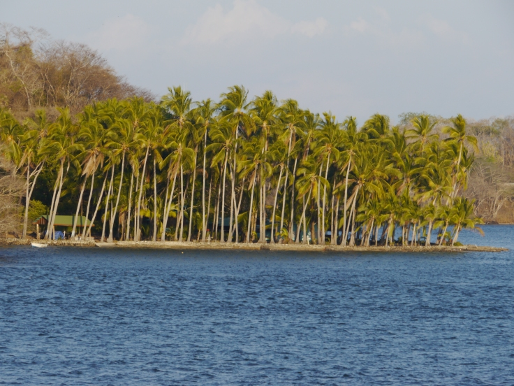 Même si on abandonne les palmiers et les plages, on est tout de même content d'avoir pu obtenir un ferry.