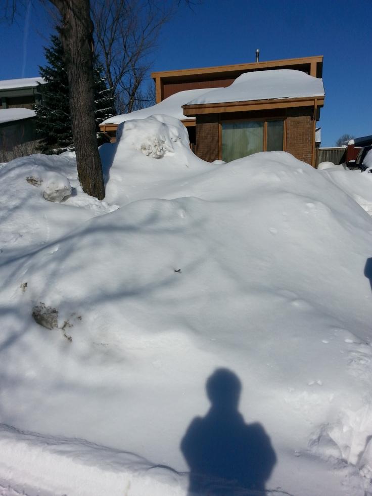 Le tas de neige accumulée chez moi / Snow pile at home