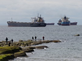 Les énormes navires ne sont jamais très loin des plages