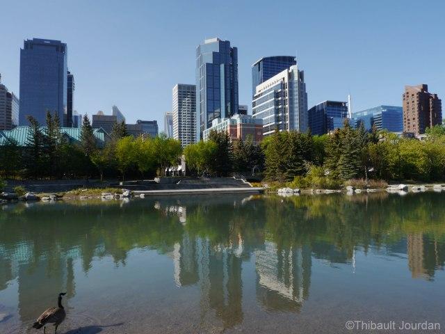 Une fois la rivière franchie, un petit lac, un parc et la skyline m'accueuillaient.